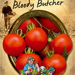 tomato seeds Bloody Butcher