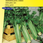 Celery seeds for sale