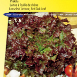 Lettuce seeds Looseleaf Red Salad Bowl (Red Oak Leaf)
