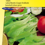 Lettuce looseleaf Green