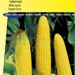 Ornamental Corn seeds for sale