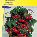 Tomato seeds for pot, Minibel