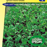 Spinach Polydane F1 (Spring and autumn crop)