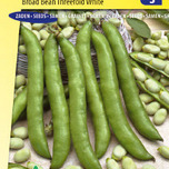 Broad bean Threefold white
