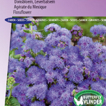 Ageratum seeds for sale