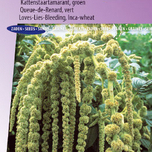Love-Lies-Bleeding Green Cascade (Inca Wheat)