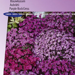 Aubrieta, Purpel Rock Cress Cascade Mix