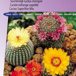 Cactus seeds for sale