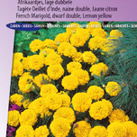 Marigold, French dwarf double Petite (Lemon Yellow)