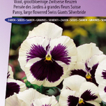 Pansy Swiss Giants Silverbride