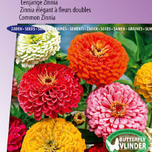 Zinnia seeds for sale