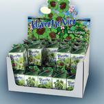 Greengift Lucky four leaf clover 40 pcs in showbox