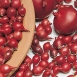 Onion seeds sets Red Baron (250gr)