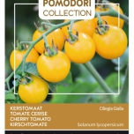 Tomato Cereza Amarilla Yellow Cherry