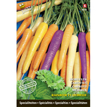 Specialties Carrots Rainbow F1