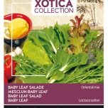 Xotica Salade Mix Exotic Baby Leaf