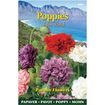 Poppies of the world - Paeoniflorum Double Mixed