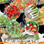 Seeds Collection Salad Plate