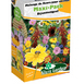 Meadow Flower Seed Mix for Bees - Maxi Pack Sluis Garden