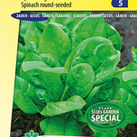 Spinach Columbia F1  (spring/summer crop)