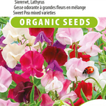 Sweet Pea seeds for sale