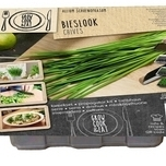 Propagator Kit Chives