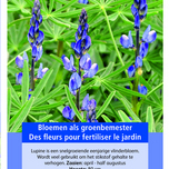 Green Manure Crop Blue Lupine / 100gr -10 m2