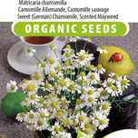 Sweet German Chamomile, Scented Mayweed (Matricaria chamomilla) EKO