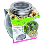 Bio Cut & Eat Salad mix - Sprouting jar glass