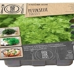 Propagator Parsley
