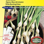 Spring onion White Lisbon Seedtape (Allium cepa)