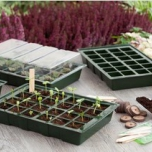 Complete propagation kit - Nature
