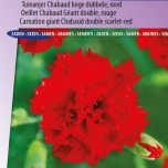 Carnation Etincellant Red – Dianthus Chabaud