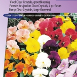 Pansy Holland Giants Mix – Viola Clear Crystals