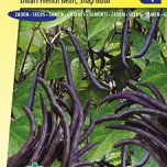 Dwarf French Bean Purple Queen - Phaseolus Vulgaris
