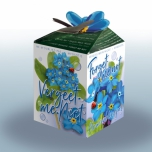 Forget me not Greengift