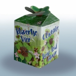 Lucky four leaf clover Greengift