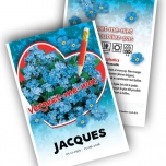 Forget-me-Not Personalized Printed Seed Packets - 10000 pieces