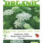 Bio Bishop's Flower The Giant - Ammi Visnaga