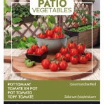 Pot Tomato Gourmandise Red - Buzzy Patio Vegetables